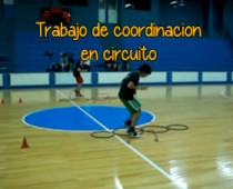 Circuito coordinación